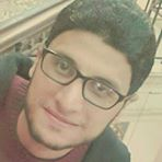 Tarek Elsayed Abd Elghani
