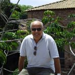 Nivaldo Peixoto