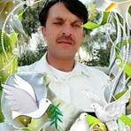 ڈاکٹر سیدحسن