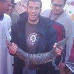 Amgad ShaweR